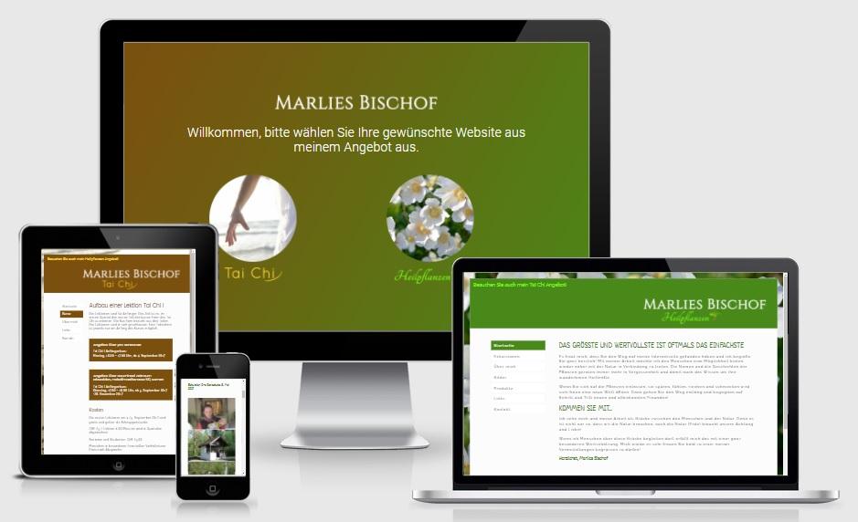 Webdesign_Dominik_Rohrer_Referenzen_Marlies_Bischof_Heilpflanzen_Tai_Chi